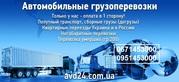 Перевозка различных грузов коммерческих по территории Украины